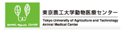 東京農工大学動物医療センター Tokyo Univercity of Agriculture and Technology Animal Medical Center